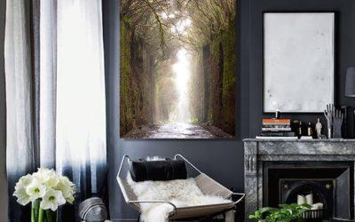 cuadro-bosque-anaga